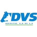 DVS Desvestsi S.A. de C.V.