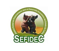 SEFIDEC01